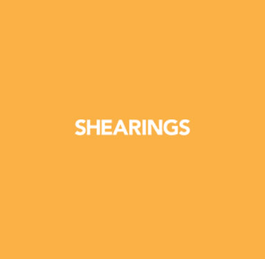 Shearings Tour Packages